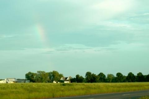 virginia rainbow