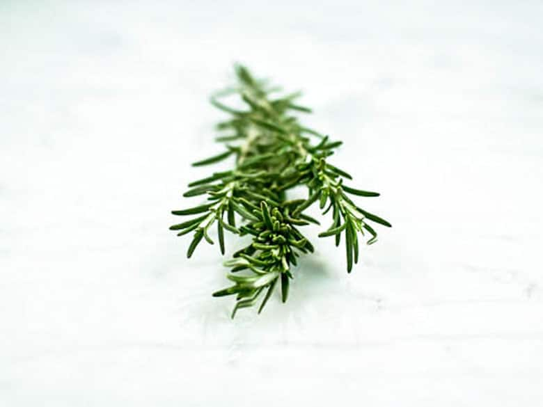 Rosemary on Valentine's Day 780