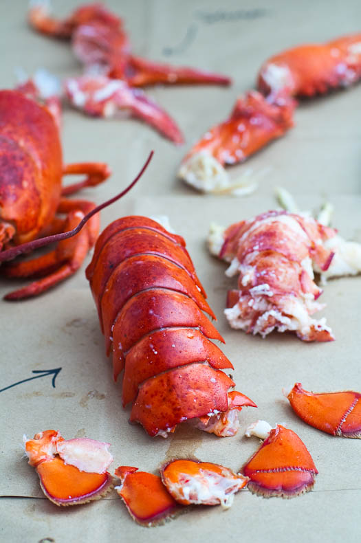 how to cook (and eat) a lobster – A Subtle Revelry