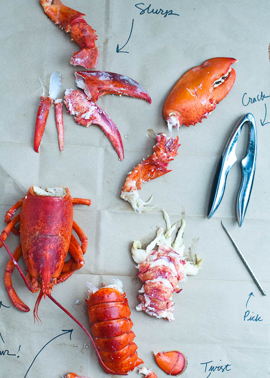 How to Cook and Eat a Whole Lobster