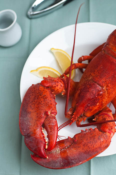 Whole Steamed Lobster | Umami Girl