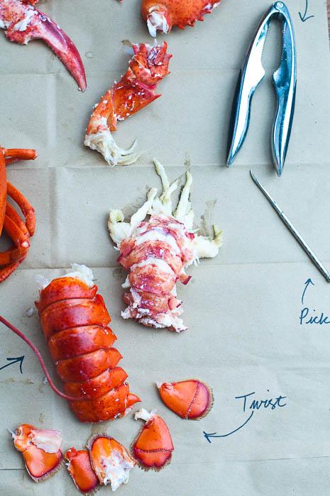 Lobster Parts | Umami Girl