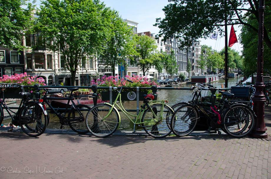 Amsterdam Canal Bridge | Umami Girl