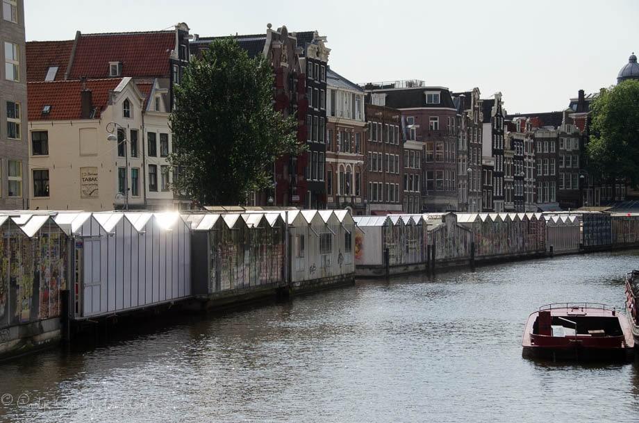 Flower Market II Amsterdam | Umami Girl