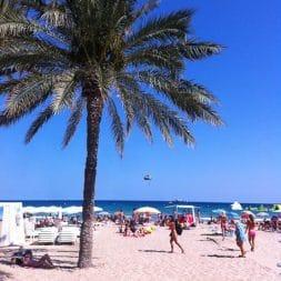 A Visit to Alicante, Spain   Umami Girl