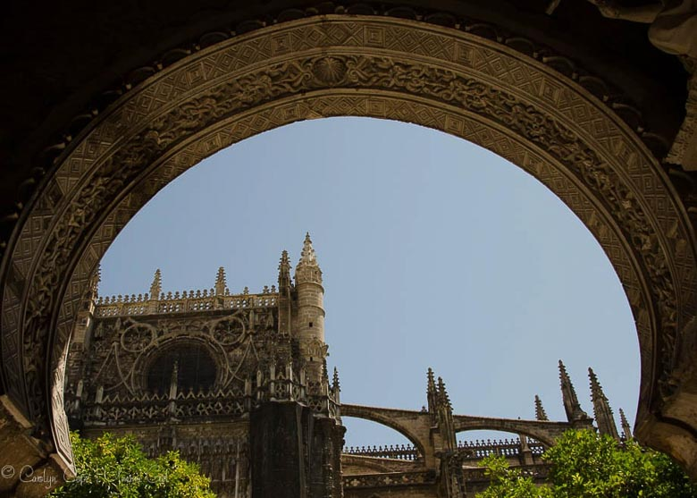 Seville Cathedral 780 | Umami Girl-2