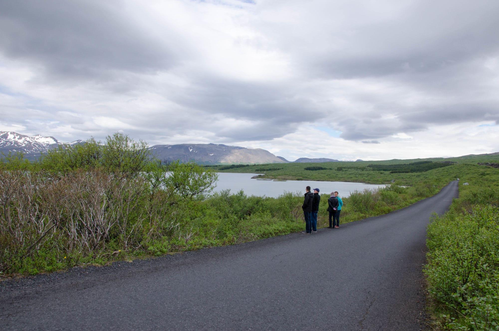 Along the Road Iceland | Umami Girl
