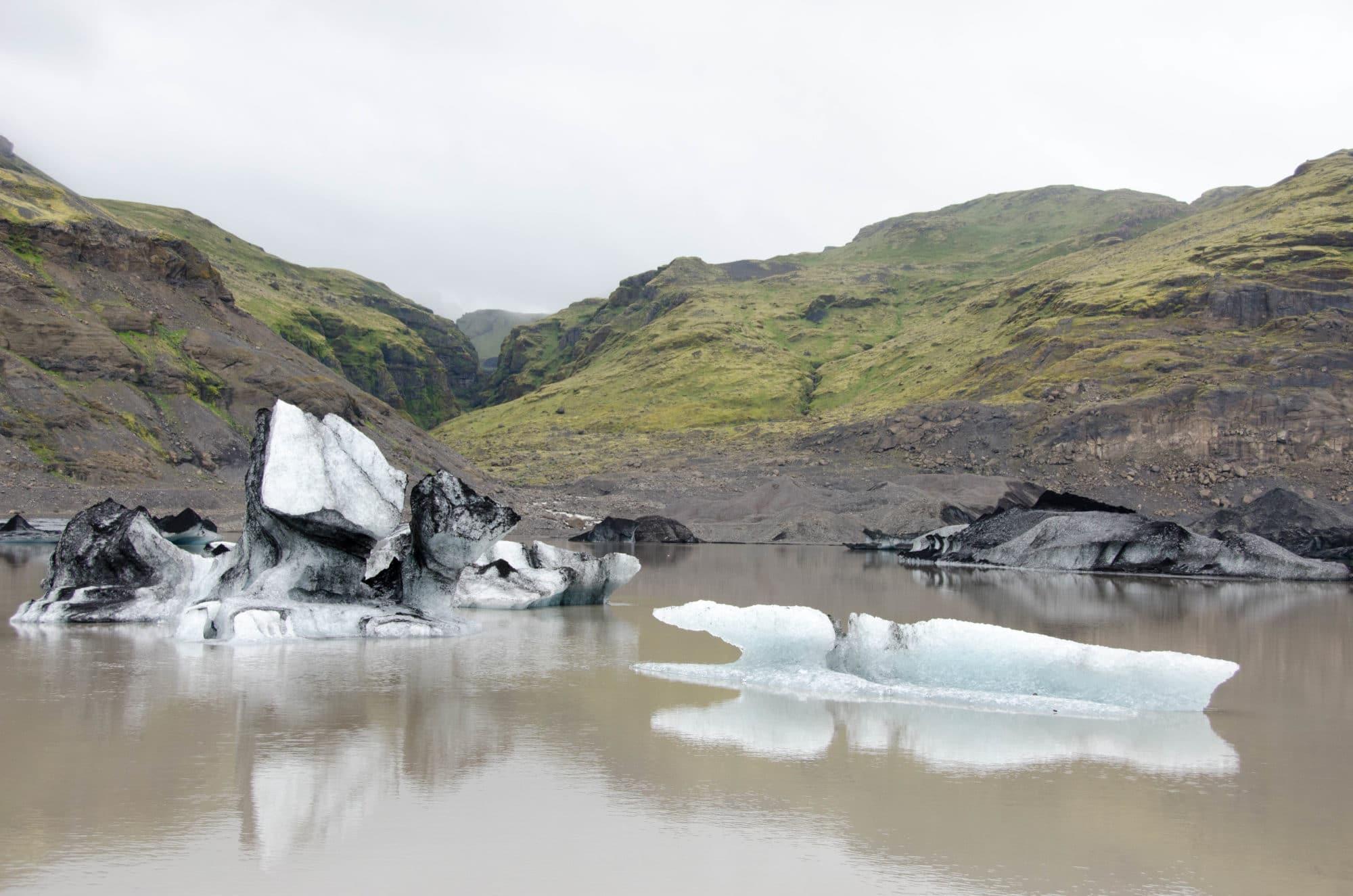 Solheimajökull Glacier Polar Bear Iceland | Umami Girl