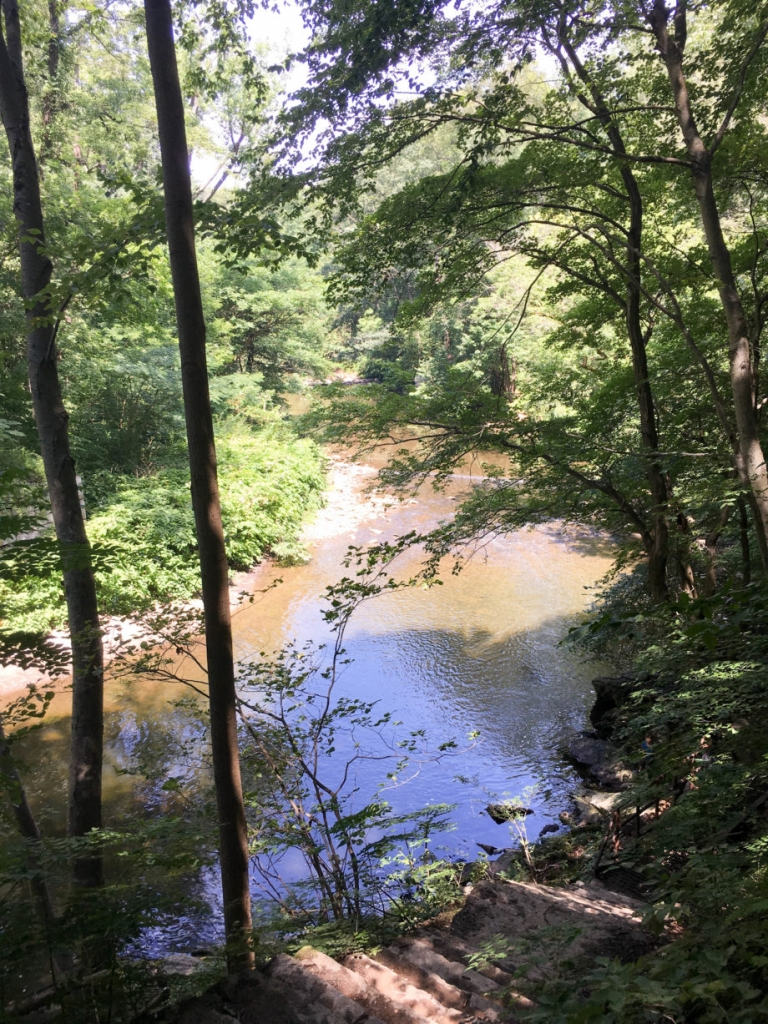 Hiking the Wissahickon | Umami Girl