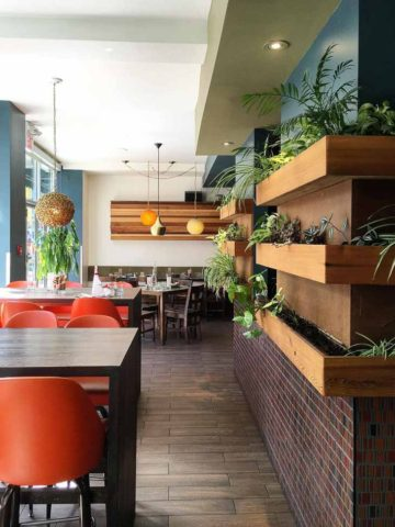 The Coup Vegetarian Restaurant Calgary | Umami Girl 780-4