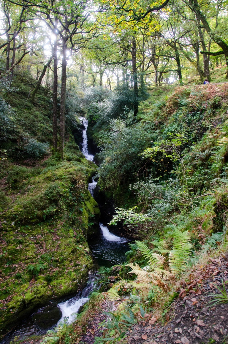 wicklow girls Top things to do in wicklow, county wicklow: see tripadvisor's 11105 traveller  reviews and photos of 67 things to do when in wicklow.