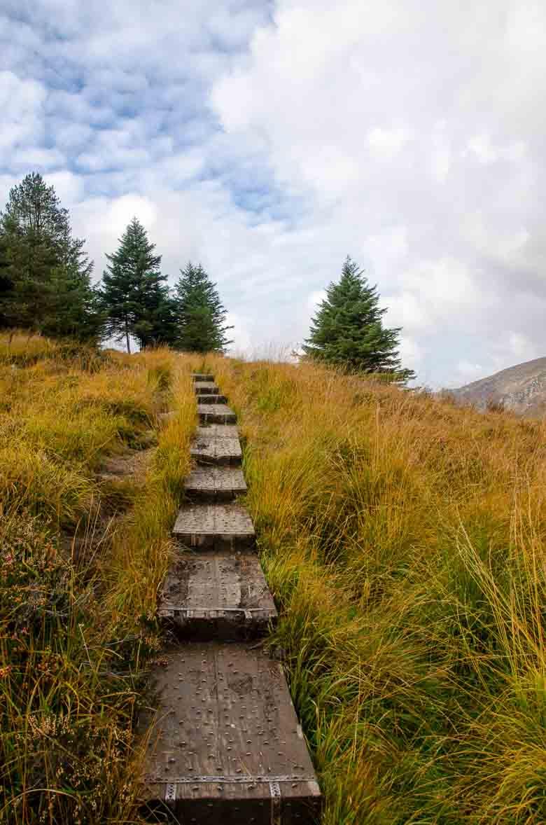 Glendalough Wicklow Ireland 780 | Umami Girl-10