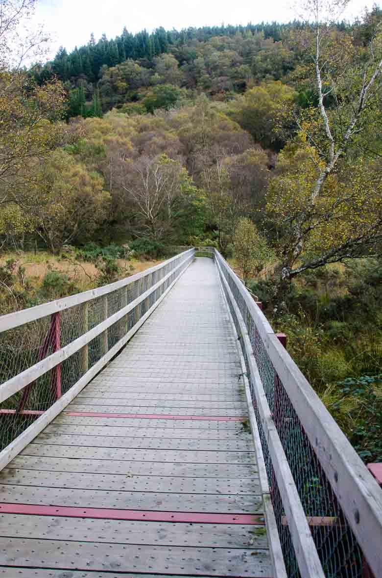 Glendalough Wicklow Ireland 780 | Umami Girl-21