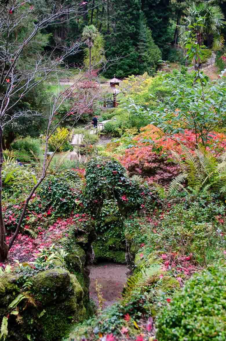 Glendalough Wicklow Ireland 780 | Umami Girl-37