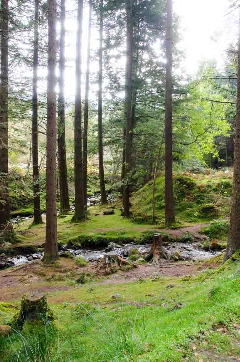 Glendalough Wicklow Ireland 780 | Umami Girl-8