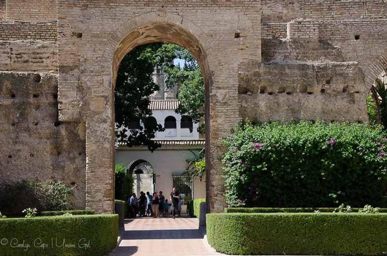 Alcazar of Seville 780 | Umami Girl