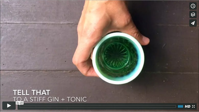 Gin and Tonic Recipe How to Make a Gin and Tonic 780 | Umami Girl