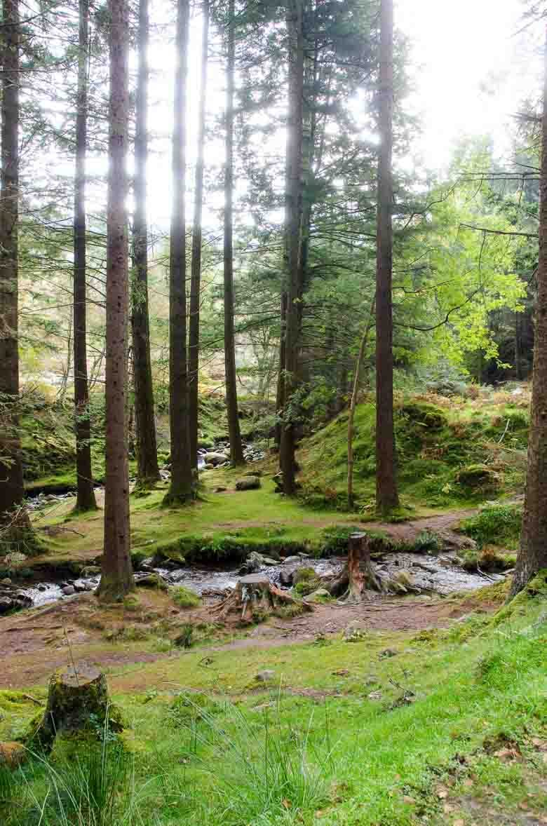 Glendalough Wicklow Ireland 780 | Umami Girl-8