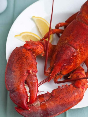 Lobster How To 780 | Umami Girl