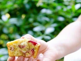 Sour Cherry Corn Muffins