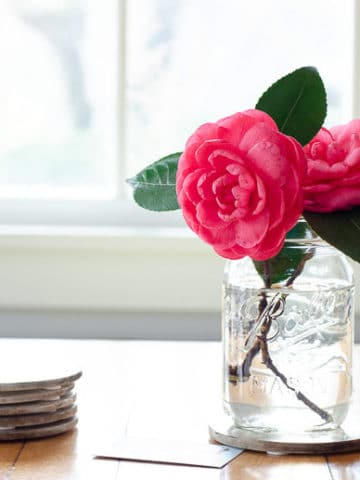 Camellia Centerpiece Ideas | Umami Girl