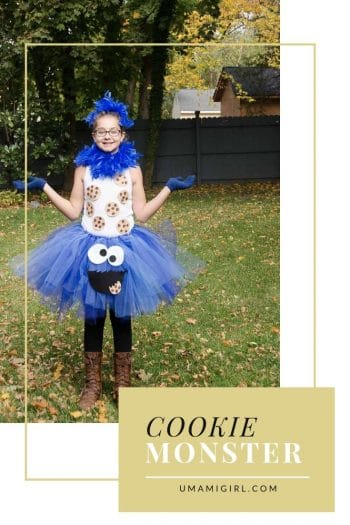 Cookie Monster Costume | Umami Girl