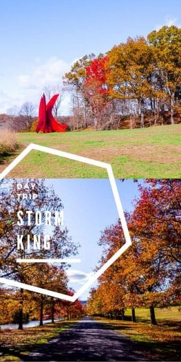 Storm King Day Trip Pin | Umami Girl