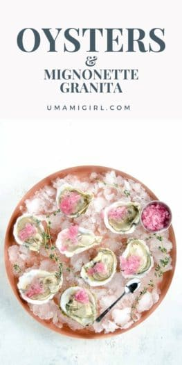 Oysters with Mignonette Granita _ Umami Girl