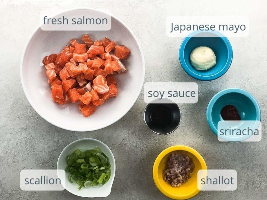 salmon, mayo, soy sauce, sriracha, scallion, shallot