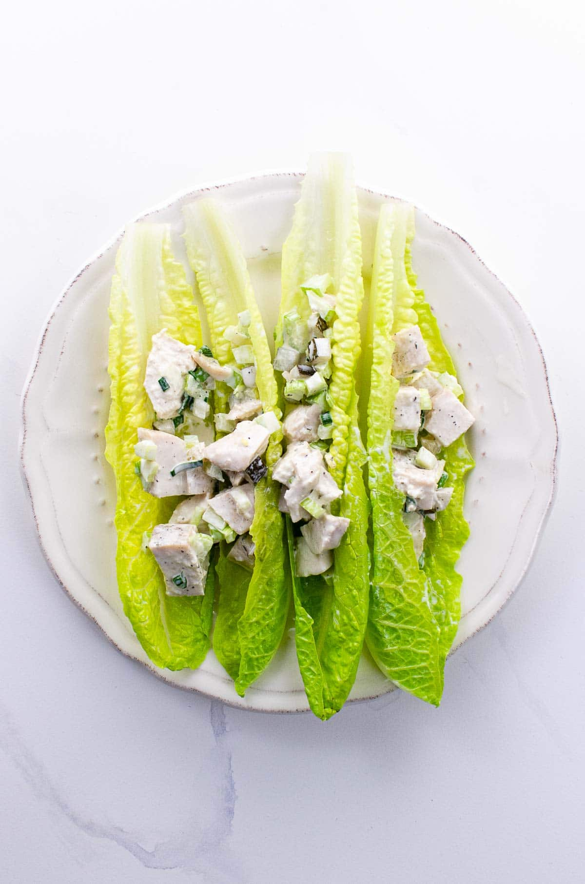 chicken salad with pickles on lettuce leaves