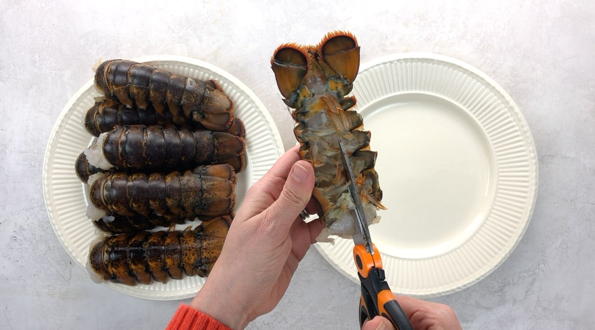 cutting down the underside of a lobster tail shell