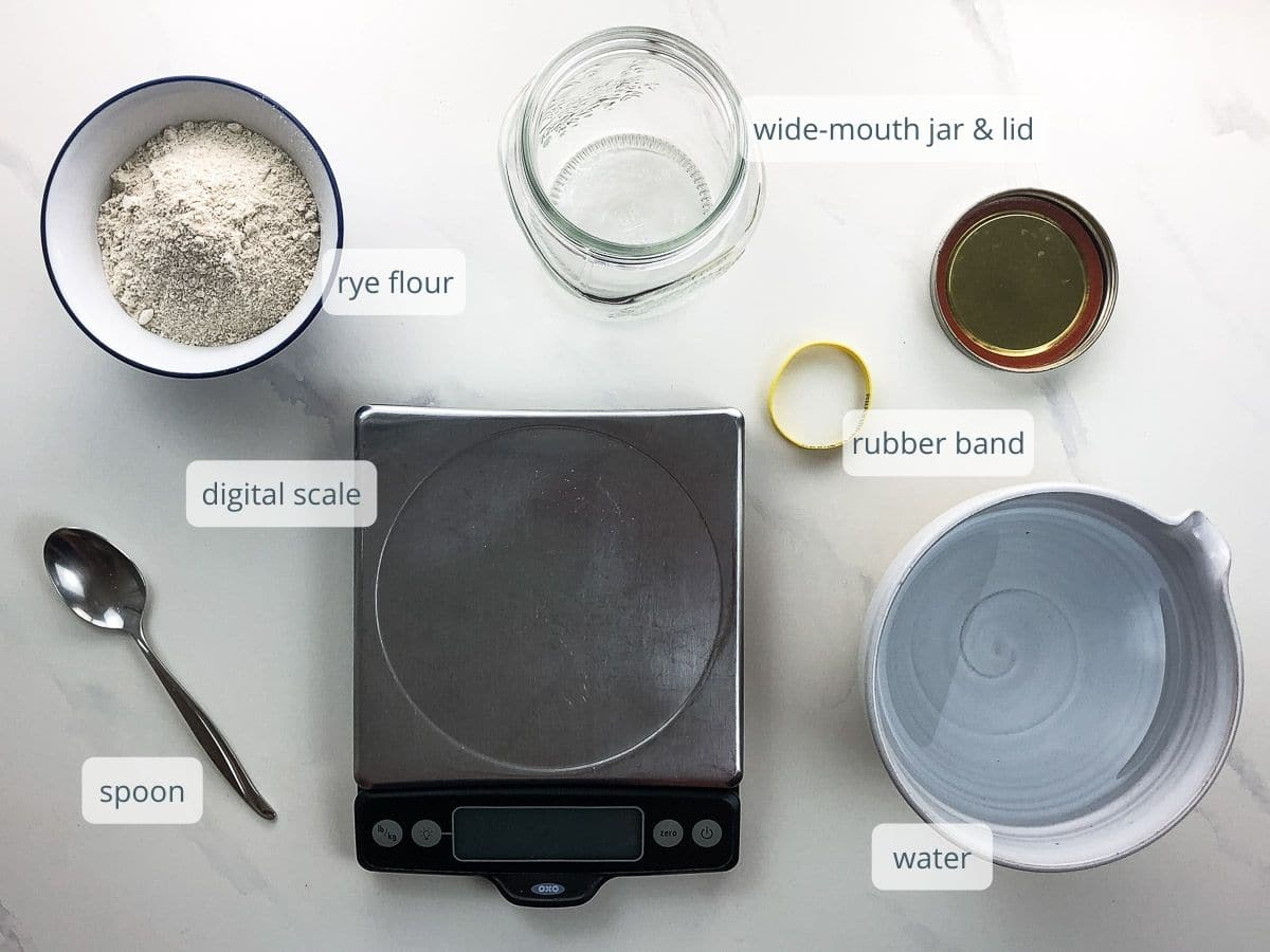 what you'll need to make a rye sourdough starter: flour, jar lid, digital kitchen scale, water, rubber band, spoon