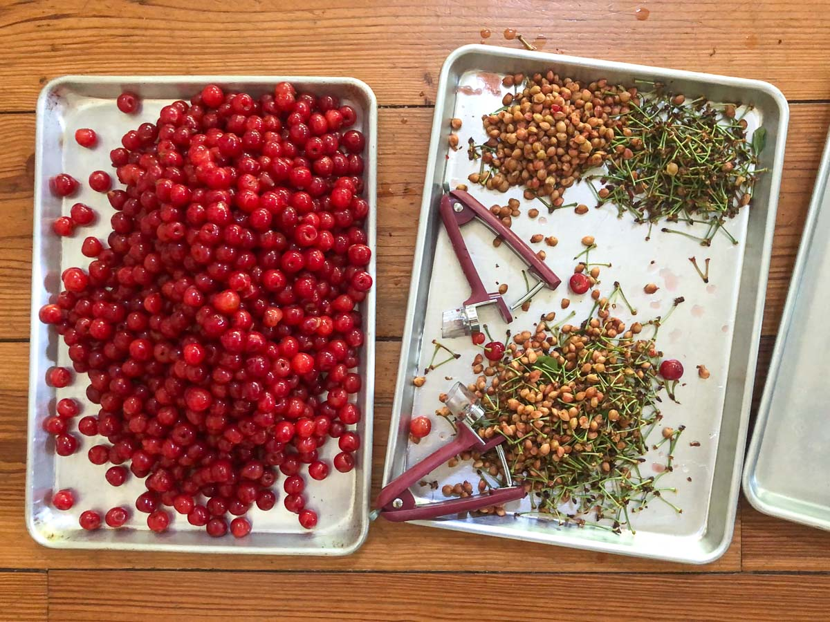 sour cherries on a sheet pan and the pits, stems, and two cherry pitters on another